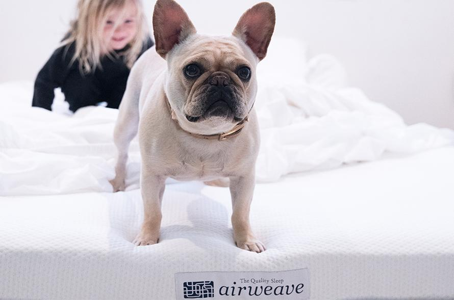 Airweave Mattress Review and Analysis