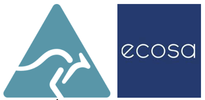 Ecosa Vs. Koala Mattress Ratings & Guide